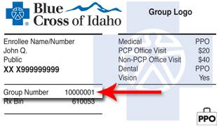 Accidental Injury Questionnaire (AIQ)   Blue Cross of Idaho